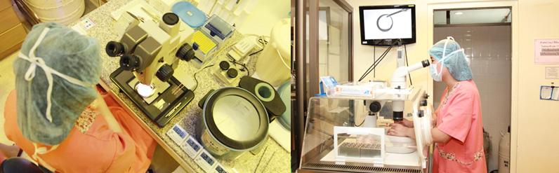 泰国试管jetanin医院